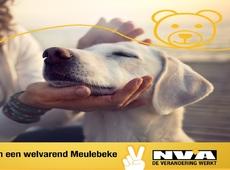 N-VA Meulebeke gaat voor een diervriendelijke gemeente